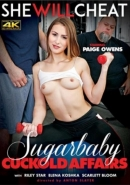 Sugarbaby Cuckold Affairs